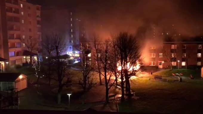 Ett cykelskjul i Malmö stod i brand under nyårsnatten. Foto: LÄSARBILD / LÄSARBILD