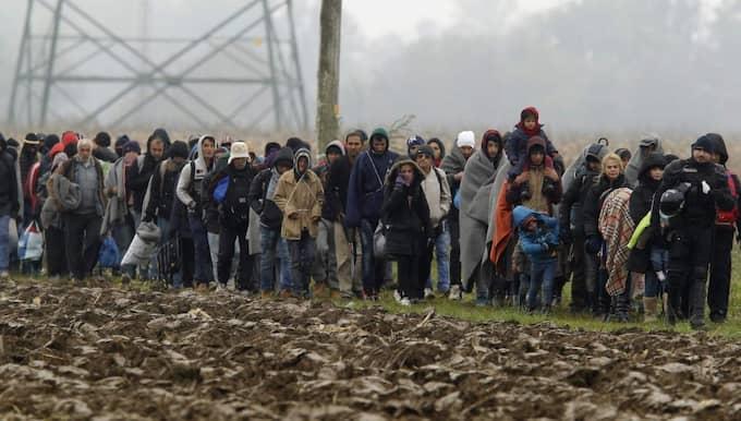 """""""Opinionen i migrationsfrågan ser ut att vara mycket snabbrörlig"""", säger Peter Santesson på Demoskop. Foto: Antonio Bat / Epa / Tt"""