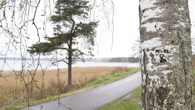 Platsen där Kevin hittades mördad 1998. Foto: FREDRIK SANDBERG/TT