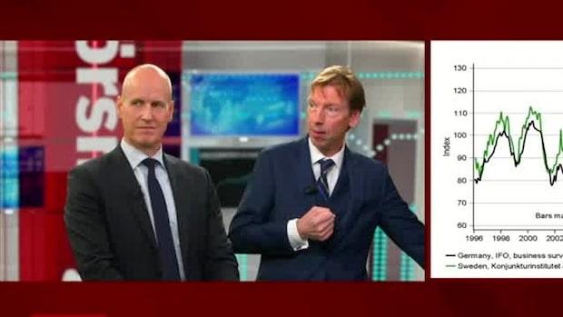 Niklas Wellfelts spaningar kring aktiemarknaden