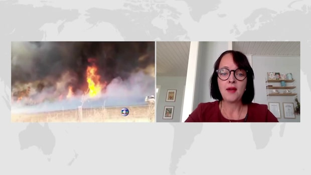 """Greenpeace om Bolsonaros utspel om bränderna: """"Absurt"""""""