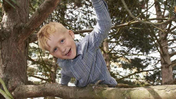 Theo Frej, 5, har chockat läkare och kirurger och överlevt - mot alla odds. Men det har varit många jobbiga operationer och oviss väntan under vägen. Foto: Stefan Lindblom/ Hbg-Bild