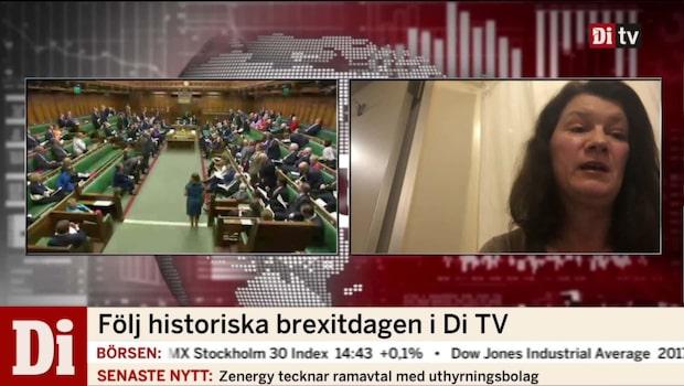 """Marita Ulvskog (S): """"Får inte öppna upp för hat mot britterna"""""""