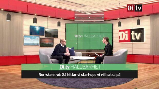 """Norrskens vd: """"Konkurrensfördel att vara hållbar"""""""