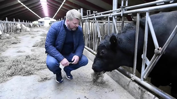 """Svenska jordbrukare som får miljonstöd av EU: """"Livsmedelsproduktionen är speciell"""""""