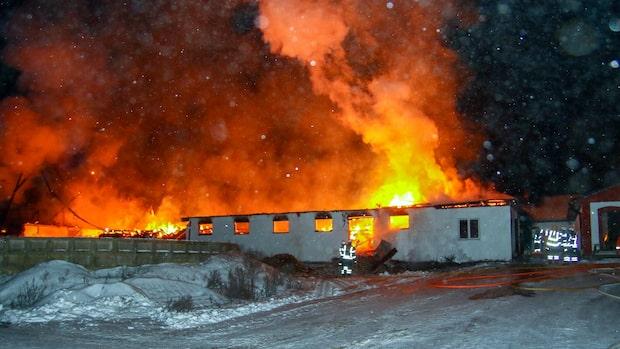 Storbrand i ladugård med 100 djur i Säffle