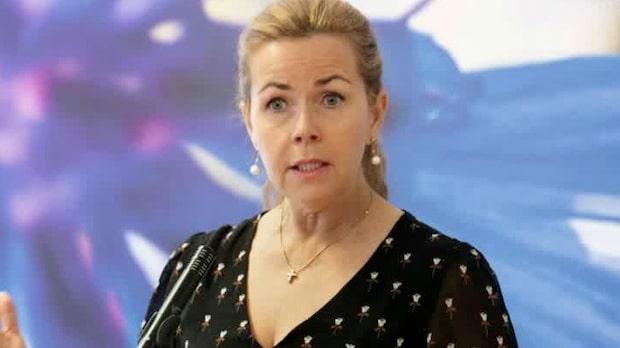 Cecilia Wikström kritiserar nya toppkandidaten i Liberalerna