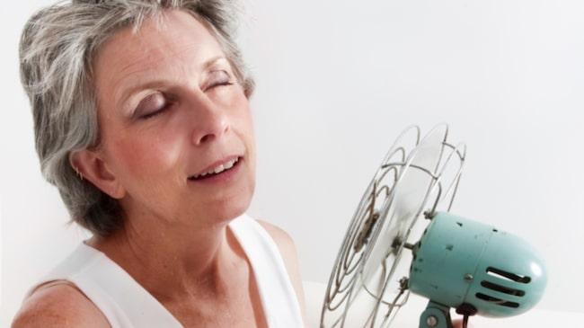 vad är menopaus