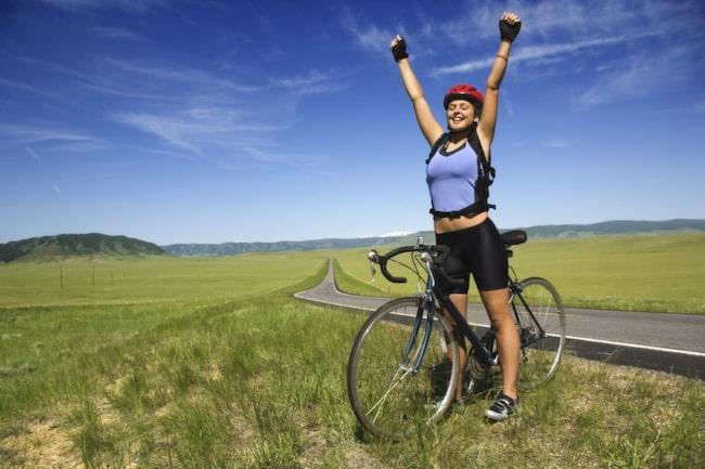 fett till cykel