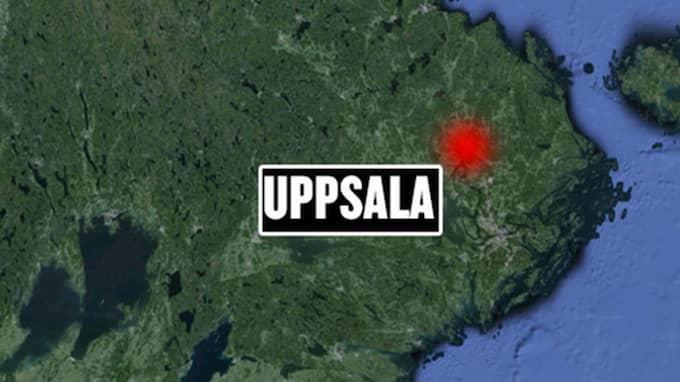 Pojken utförde de två våldtäkterna på toaletter på en högstadieskola i Uppsala där han själv var elev. I båda fallen var tillvägagångssättet snarlikt. Foto: Google earth