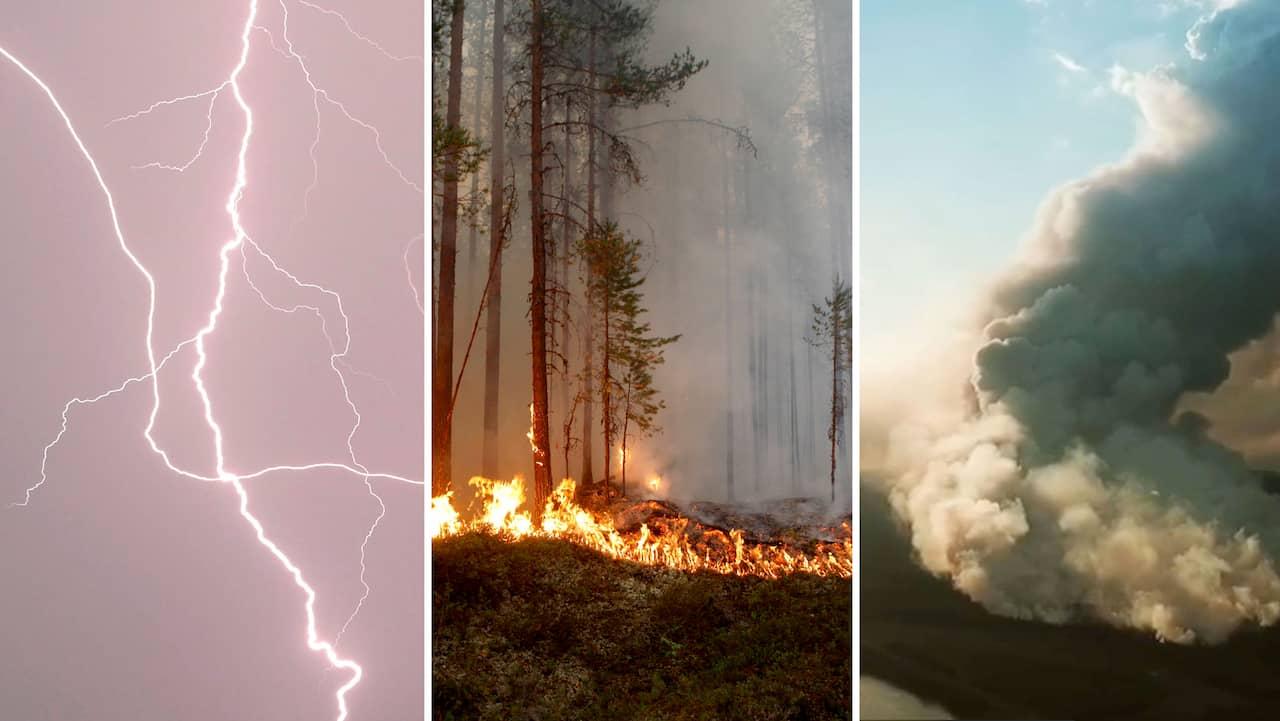 Skogsbränderna i Sverige – SMHI:s nya mardrömsprognos