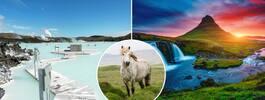 Weekend på Island: 7 måsten du inte vill missa