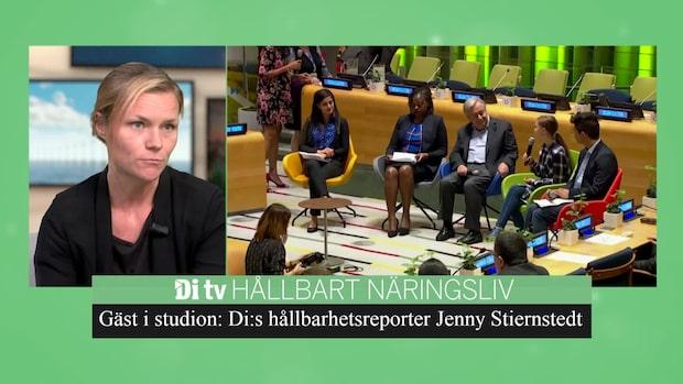 DiTV Hållbart Näringsliv - Specialsändning om FN:s klimattoppmöte