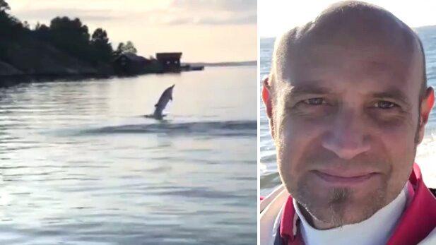 """Daniels mäktiga möte med delfinen: """"Häftigt"""""""