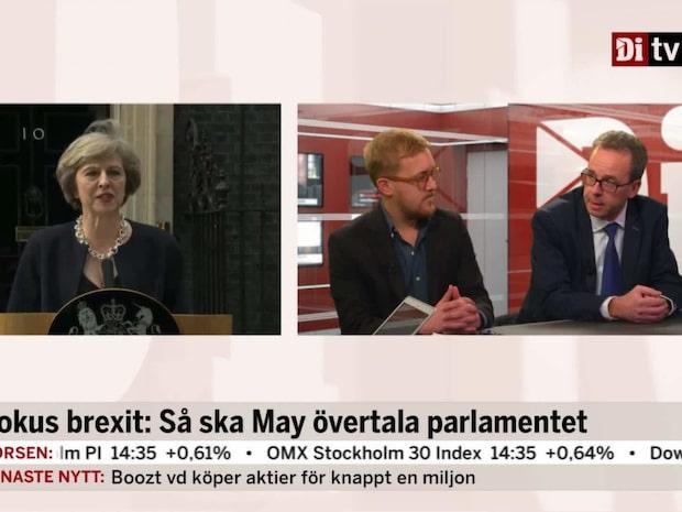 """Åhlund: """"Svenska företag bör ta höjd för en hård brexit"""""""