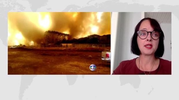 "Erika Bjureby: ""Amazonas är världens lungor"""