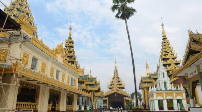 Shwedagon Paya i Burmas kommersiella huvudstad Rangoon är ett av världens vackraste buddhistiska monument.