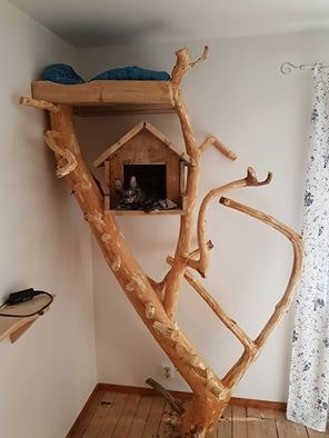 Se så läckert det blev! Ett riktigt träd fick bli ett katt-träd, med både klätterstege och mysig koja.
