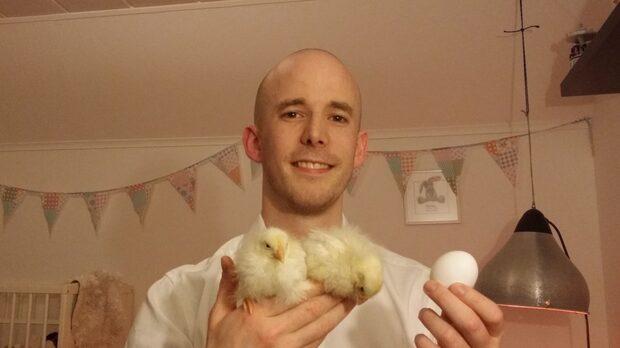 David fick kycklingar i ägg från Ica