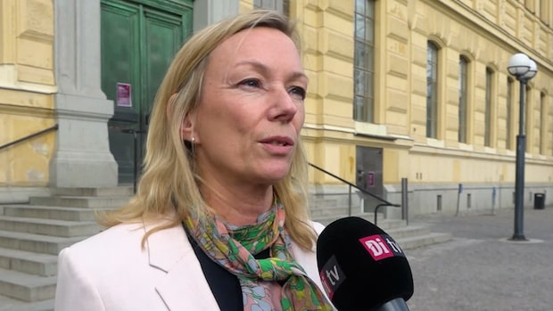"""Professorn: """"Skattebetalarna bär Riksbankens risk"""""""