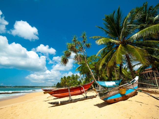 Paret var på bröllopsresa på Sri Lanka, och fick feeling och köpte hotellet de bodde på.