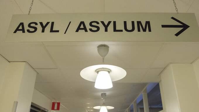 SR berättar om tre sajter som skräddarsyr paket för den som vill få asyl i Sverige. Foto: MAJA SUSLIN / TT