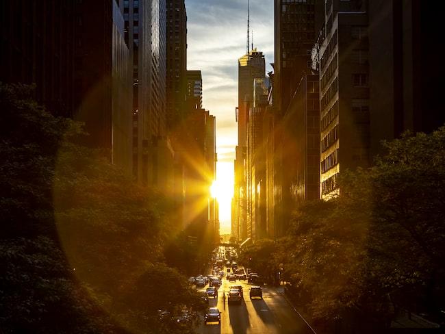 42:a gatan på Manhattan i New York badar i solljus.