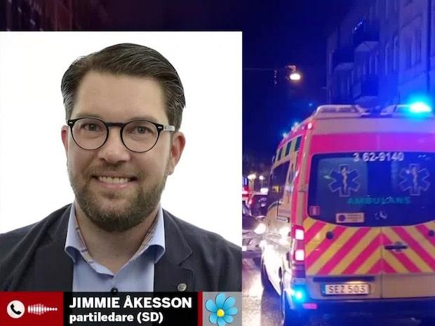 Jimmie Åkesson: Nu är det upp till C och L