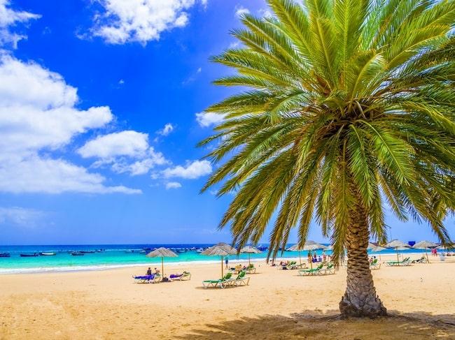 Varningen riktar sig till resenärer på Kanarieöarna.