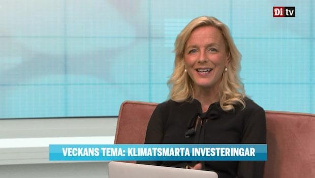 Veckans tema om klimatsmarta investeringar