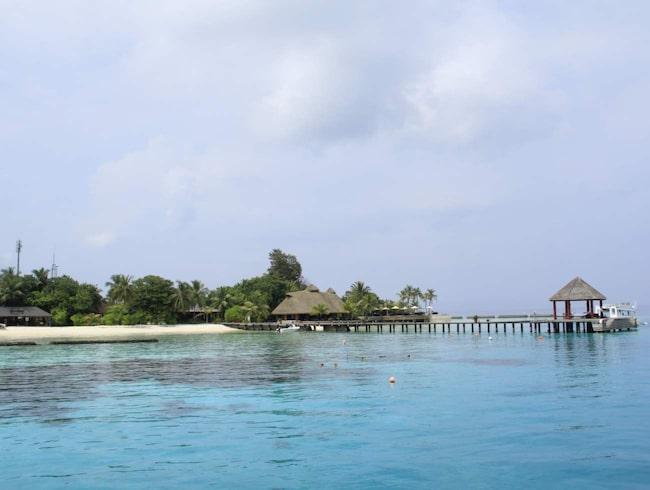 På Maldiverna samlas och samsas dykare och smekmånadspar.