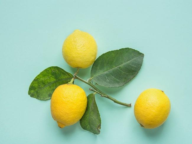 Citroner ger en härlig doft hemma – men att det skulle göra disken renare om man stoppar en citron i diskmaskinen stämmer inte. Möjligtvis kommer disken dofta gott.