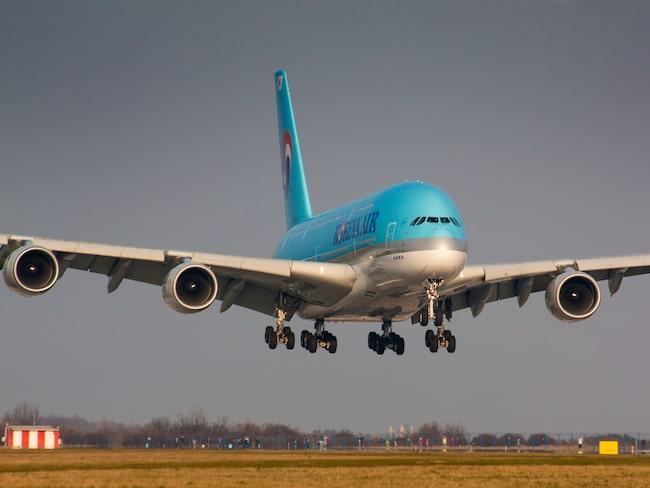 Korean Air tvingades återvända till sin gate på JFK.