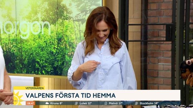 """Maria Forsbloms kisskaos i Nyhetsmorgon: """"Liten olycka"""""""