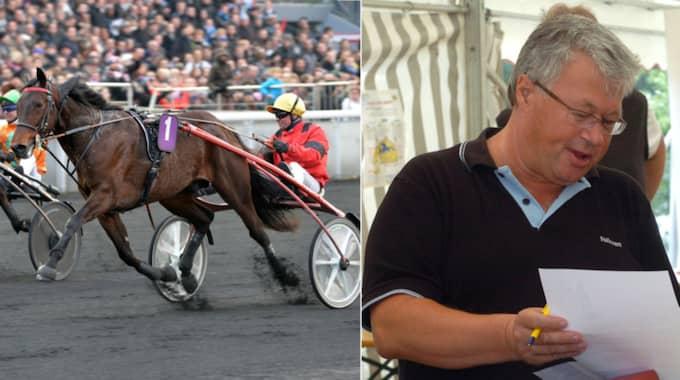 Tomas Thells företag Hingstdepån har betäckningsrätterna på flera av de största franska stjärnorna. Foto: Kanal 75