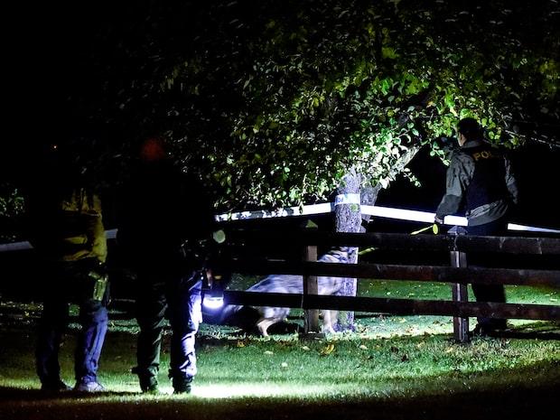 Grovt rån i villa – minst en skadad