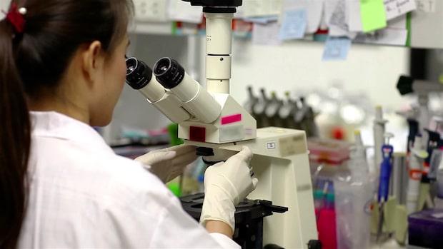 Ny DNA-lag kan lösa hundratals mord