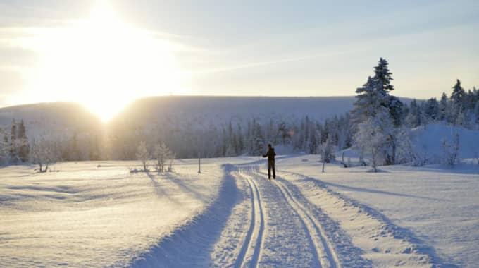 Sett till län står då Dalarna för de största besökarantalen med 43,5 procent av liftkortsomsättningen följt av Härjedalen-Jämtland med 34,9 procent. Foto: Henrik Montgomery / Tt