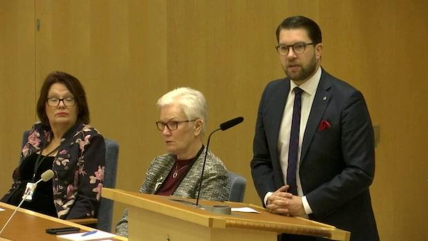 """Jimmie Åkesson: """"Det är sandlådenivå"""""""