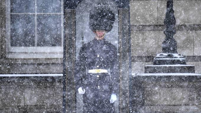 En soldat vaktar Buckingham Palace i London. Foto: NEIL HALL / EPA / TT / EPA TT NYHETSBYRÅN
