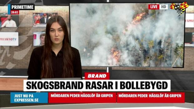 Skogsbrand rasar i Bollebygd