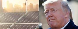 Donald Trump inför avgifter på import av solceller