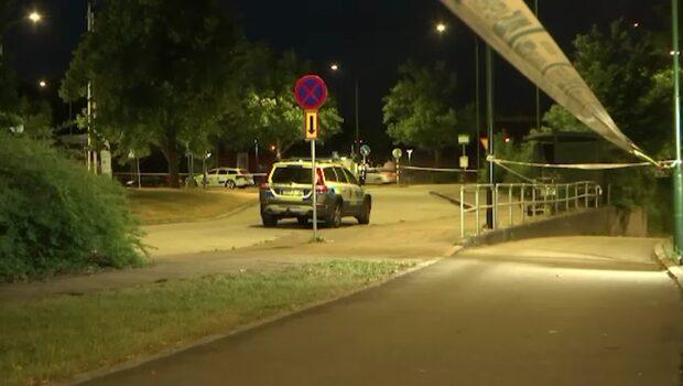 Överklassens knark finansierar Malmös gängvåld