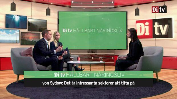 Experterna: Bolagen som kan gynnas av EU:s gröna giv
