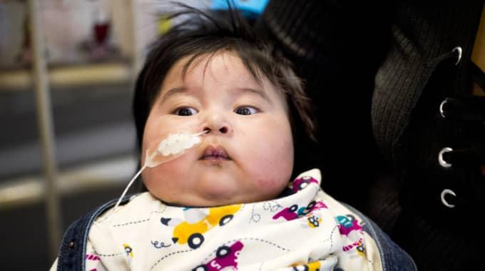 Nu kämpar pojken för sitt liv på Lunds universitetssjukhus och föräldrarna Ingryd Rojas och Cristian Alvarado har vakat vid hans sida dygnet runt sen han kom till dem. Foto: Rickard Nilsson