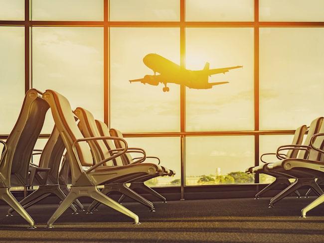 Stora fönster från golv till tak ger ett naturligt ljusinsläpp på flygplatserna. Det gör oss lugna och harmoniska.