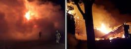 Fyrverkeripjäs orsakade brand – familjens livsverk förstört