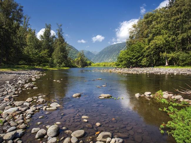 Hawaiis häftigaste vattenrutschbana är en statshemlighet. – och ligger dold långt inne i Waipiodalen.