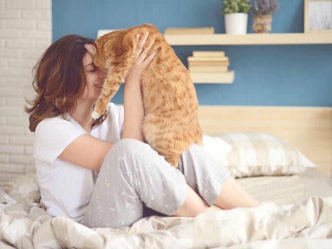Katter beskrivs ofta som antisociala och själviska djur - företrädesvis av personer som själva inte är kattägare.
