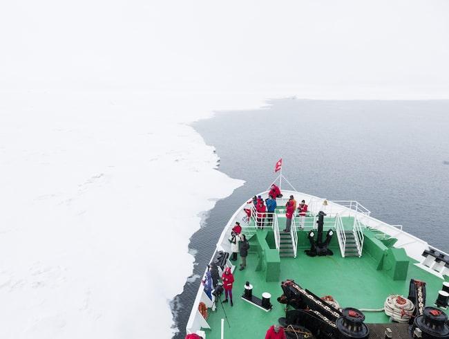 Under lördagen attackerades en man av en isbjörn på en resa till Svalbard.
